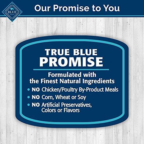 60%OFF Blue Buffalo BLUE Health Bars - 16oz 17.5