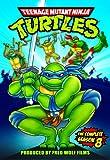 Teenage Mutant Ninja Turtles S8