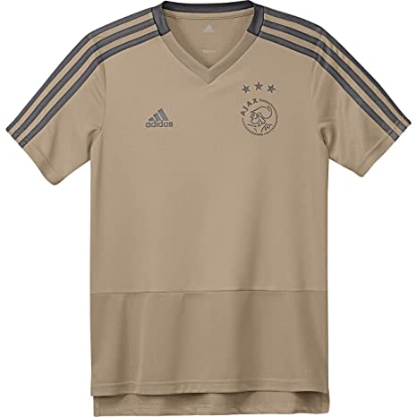 5fc918bca Image Unavailable. Image not available for. Color  adidas 2018-2019 Ajax  Training Football Soccer T-Shirt Jersey ...