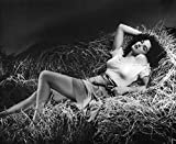 LAMINATED 29x24 Poster: Jane Russell in The Outlaw