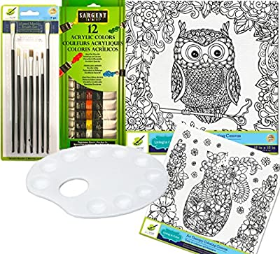 Art Therapy Owl + Mason Flower Jar Paint set with 12 Color Acrylic Paints / Brush Set & Palette Color your own picture art kit 2 pack