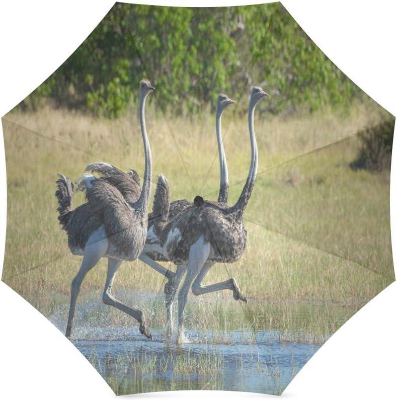 Custom Cute Ostrich Compact Travel Windproof Rainproof Foldable Umbrella