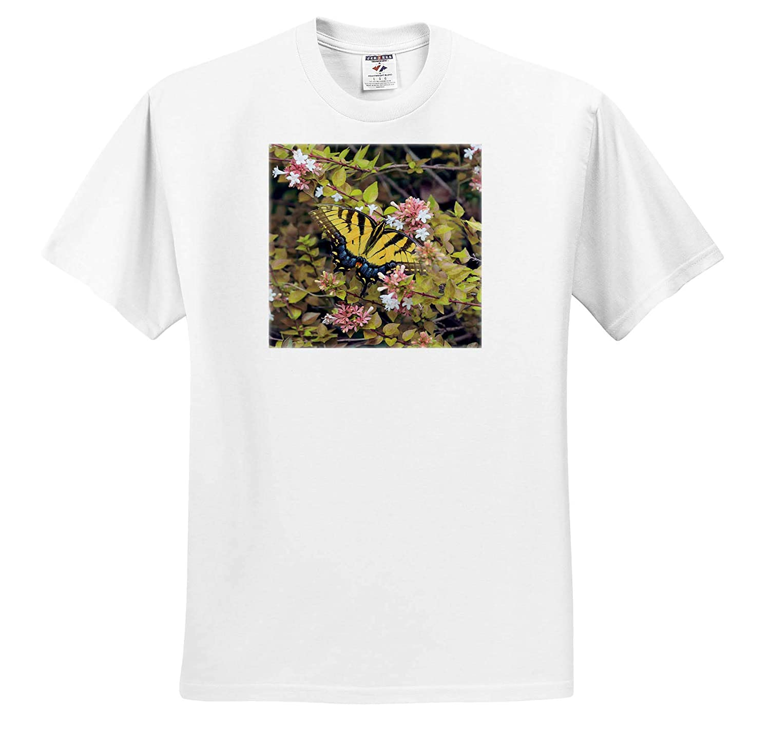 Photograph of a Beautiful Eastern Tiger Swallowtail on an abelia Bush 3dRose Stamp City Nature - T-Shirts