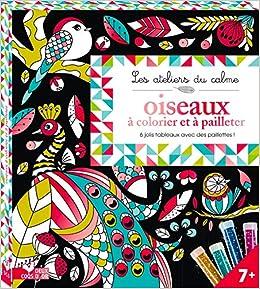 Tableau A Pailleter Oiseaux Les Ateliers Du Calme French Edition Lili La Baleine 9782012910263 Amazon Com Books
