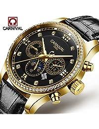 Pilot Men's Diamond Automatic Mechanical Watch Luminous Moon Phase Transparent Skeleton Bracelet Watch (leather black)