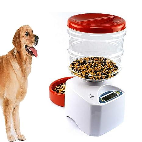 FXQIN Comedero automático para Perros o Gatos - Dispensador de ...