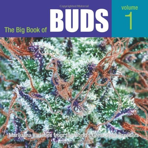 61aSsZzyp9L - Big Book of Buds, the RP When Stock Sold: Marijuana Varieties from the World's Greatest Seed Breeders: Marijuana Varieties from the World's Great Seed Breeders by Rosenthal, Ed (2006) Paperback
