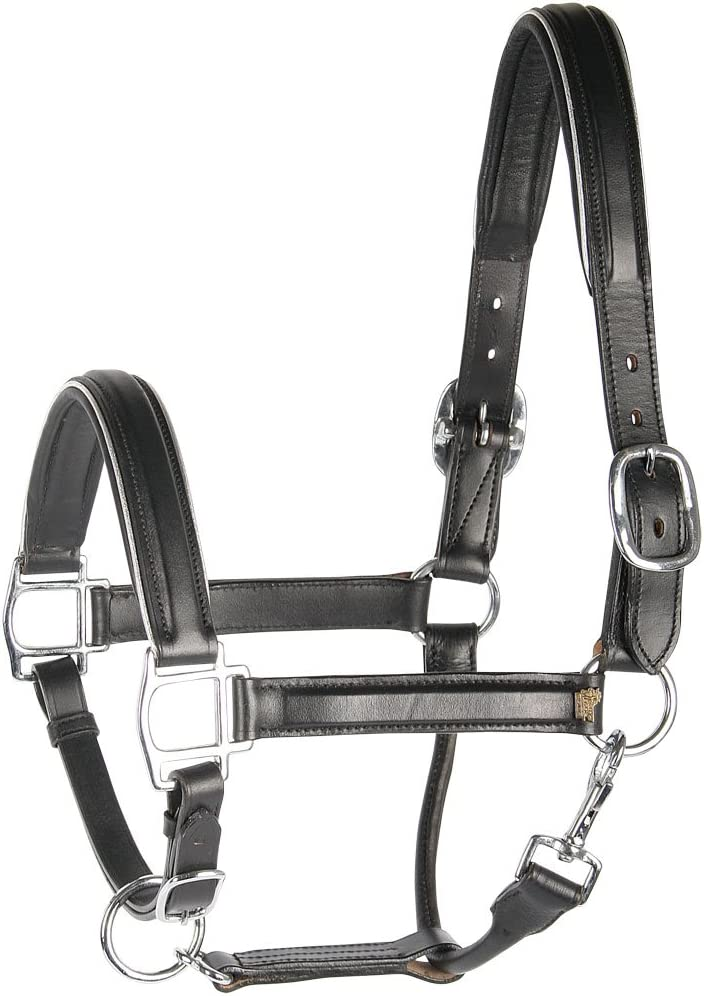 Harry 's Horse 28500021 – 02 COB Piel – Cabestro, Color Negro con Ribete y – COB, M, silight marrón