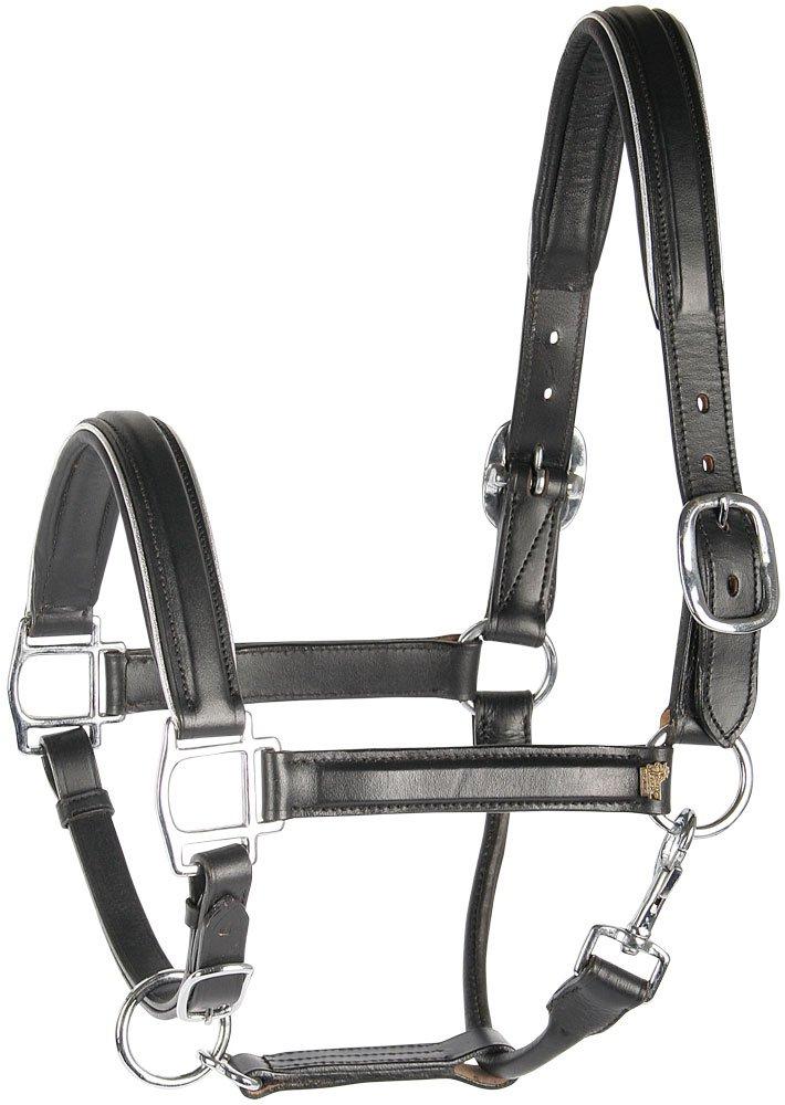 Harrys Horse 28500021-02cob Lederhalfter M Cob schwarz mit Paspel silight brauner