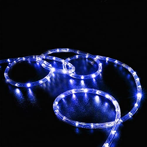 EONSMN Solar Rope Lights, Waterproof 100LED 39ft Copper Wire Tube Fairy String Lights for Wedding Garden Lawn Patio Fence Party Decoration Blue