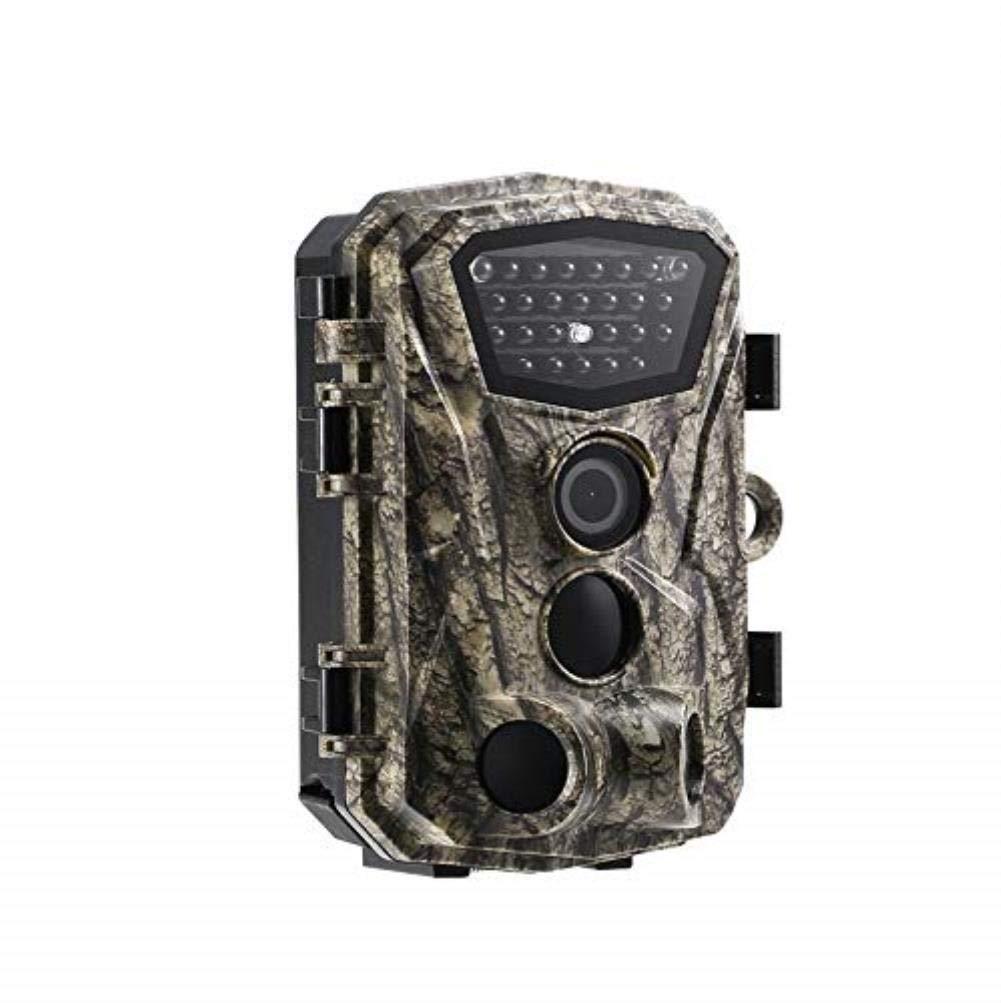上品 野生生物のカメラ B07R1MYBTR 1080、H883Wカメラ18Mp 1080 p赤外線ナイトビジョンカメラ0.6 sトリガー野生ゲーム野生生物偵察カメラ B07R1MYBTR, Paondor(パンドール):2f13466c --- dou13magadan.ru