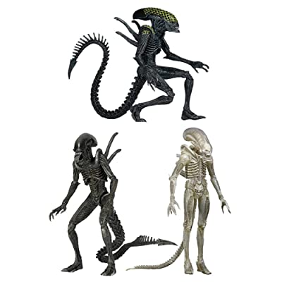 Aliens série 7 assortiment figurines 23 cm (14)
