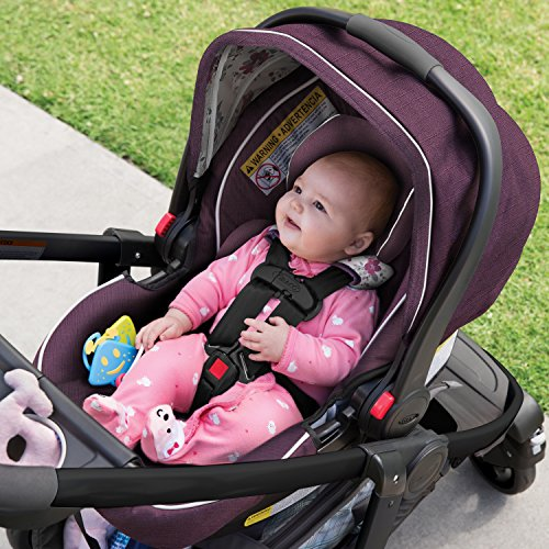 Graco Modes Travel System, Nanette
