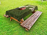 Lunarable Sports Outdoor Tablecloth, American Football on The Green Grass Field with The Fifty Yard Line Pro Soprts, Decorative Washable Picnic Table Cloth, 58 X 84 inches, Green Red White