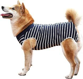 Amazon.com: Traje de recuperación para perros, protector de ...