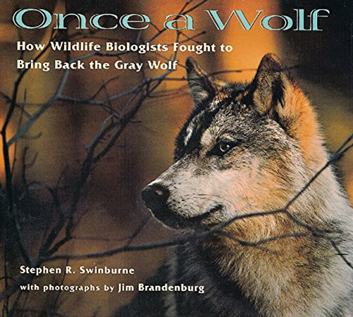 - Once A Wolf: How Wildlife Biologists Fought to Bring Back the Gray Wolf