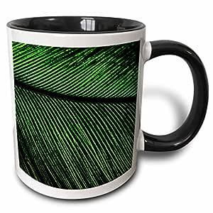 3dRose Resplendent Quetzal bird, Costa Rica - SA22 AMR0029 - Andres Morya Hinojosa - Two Tone Black Mug, 330ml