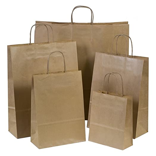 10x Brown Paper Gift Bags with Twisted Handles - 18cm x 22cm x 8cm ...