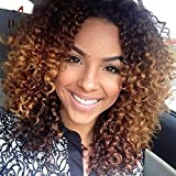 YOURWIGS Wigs for Black Women Afro Kinky Wig Short Curly Wigs Black and Brown Ombre Wig Heat Resistant Fiber 16'' with Wig Cap Z083