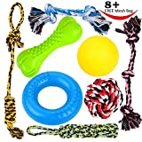 8 Durable Dog Chew Toys - Puppy Toys - Best Reviews Guide