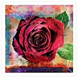 Art Wall 'Rose' Unwrapped Canvas by Elena Ray, 28