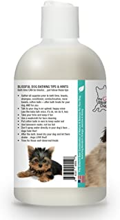 product image for The Blissful Dog Gentle Touch Dog Shampoo, 8-Ounce