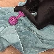 Pet Supplies : Pet Chew Toys : PetSafe Busy Buddy Waggle