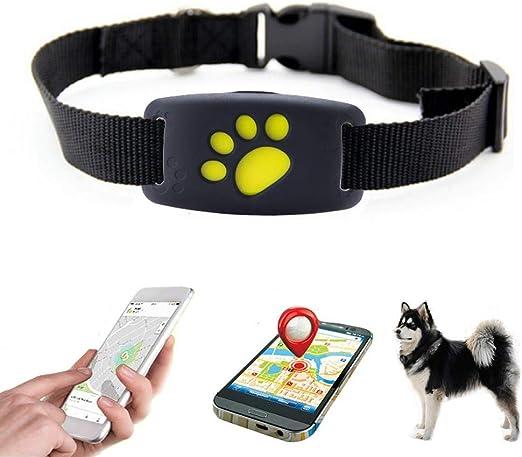 W Pet Gps Halsband Hund Mit App Gps Ortungshalsband Leichter