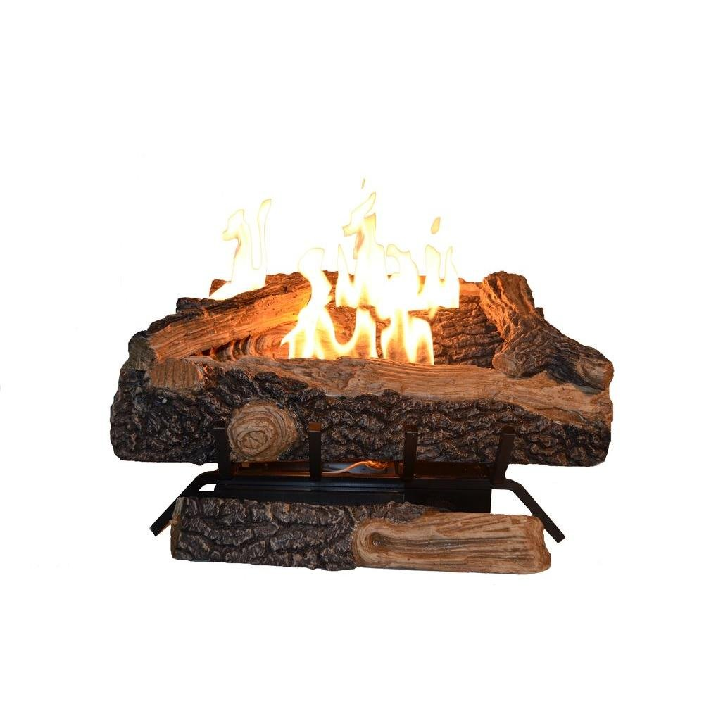 Emberglow Oakwood 22 in. Vent-Free Liquid Propane Gas Log Set with Thermostatic Control