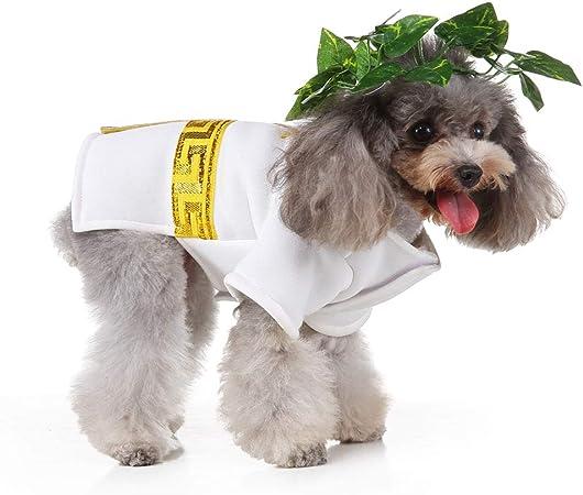 ZDJR Traje de Mascota con Disfraces de Halloween Camisa de Perro Leaf Sombrero Divertido para el pequeño Perro,XL: Amazon.es: Hogar