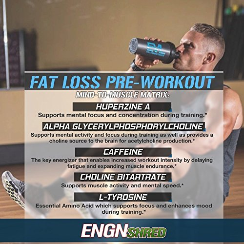 Evlution Nutrition ENGN SHRED Pre workout Thermogenic Fat Burner Powder, Energy, Weight loss, 30 Servings (Cherry Limeade)