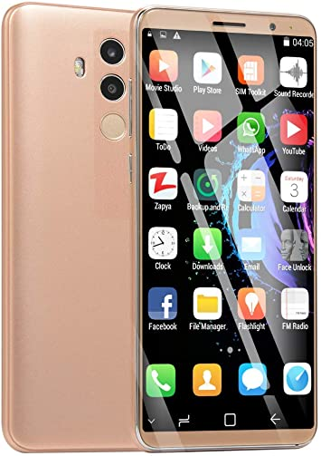 DingSheng Mate10Pro - Smartphone libre (cámara doble HD de 5,72 pulgadas, Android 6.0, 512 M + 4 G de ROM, memoria de ampliación de 32 GB, Wi-Fi, GPS, 3G, llamadas): Amazon.es: Electrónica