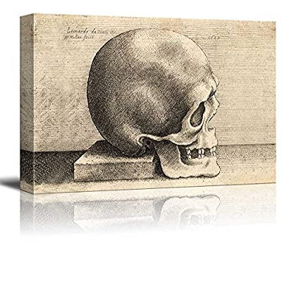 Right Profile of a Skull (After Leonardo da Vinci) by Wenceslaus Hollar Print Famous Oil Painting Reproduction