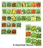 Set of 40 Heirloom Vegetable Seeds 100% Non-GMO - 31 Different Types of Seeds Guaranteed! Includes 9 Assorted Bonus Seeds!