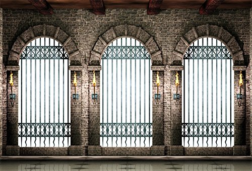 LFEEY 7x5ft Mediaeval Arches Corridor Wall Backdrop Castle Indoor Torch Windows Gate Railings Photography Background for Portraits Halloween Photo Studio -