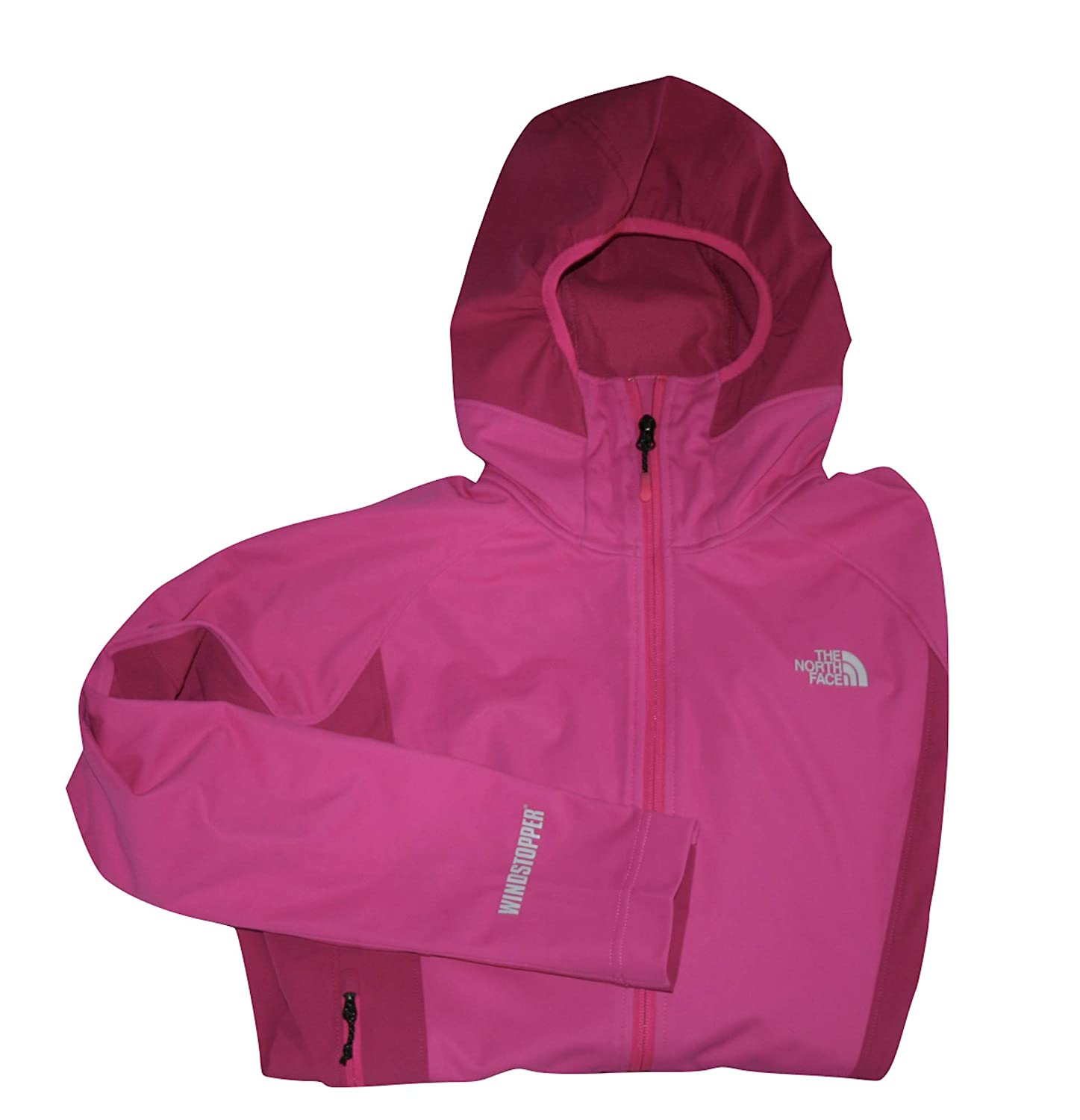 ac3eb9c0d The North Face Women's Hoodie Alpine Project Soft Shell Jacket ...