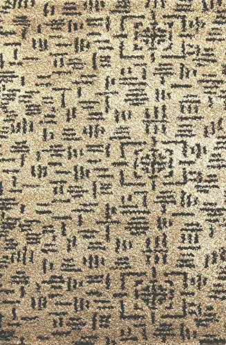(Dynamic Rugs PS696204109 Passion 6204-109 Rug, 5'3