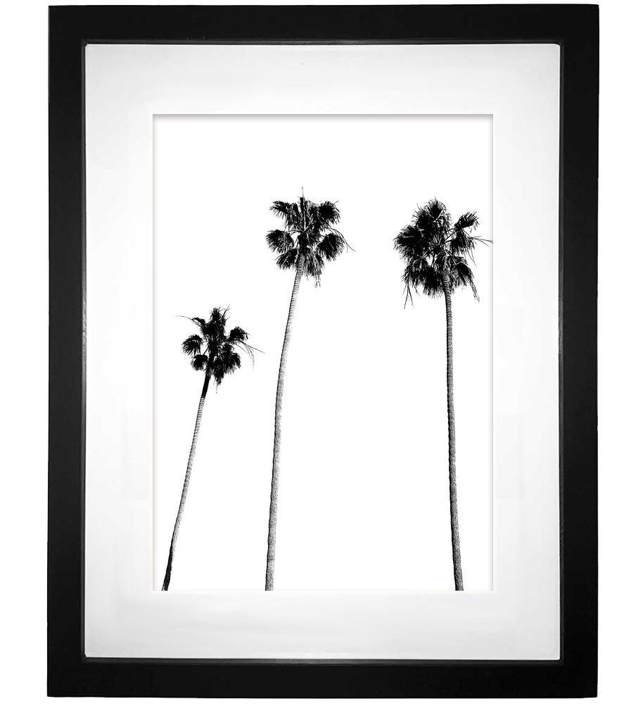 Palm Tree Print, Palm Print, Palm Tree Photography, Black and White, Palm, Palm Tree, Tropical Wall Art, Tropical Decor, Wall Decor, Black and White Palm Tree, Black Palm Tree, Minimalist, 8x10 by MotivatedWallArt (Image #3)