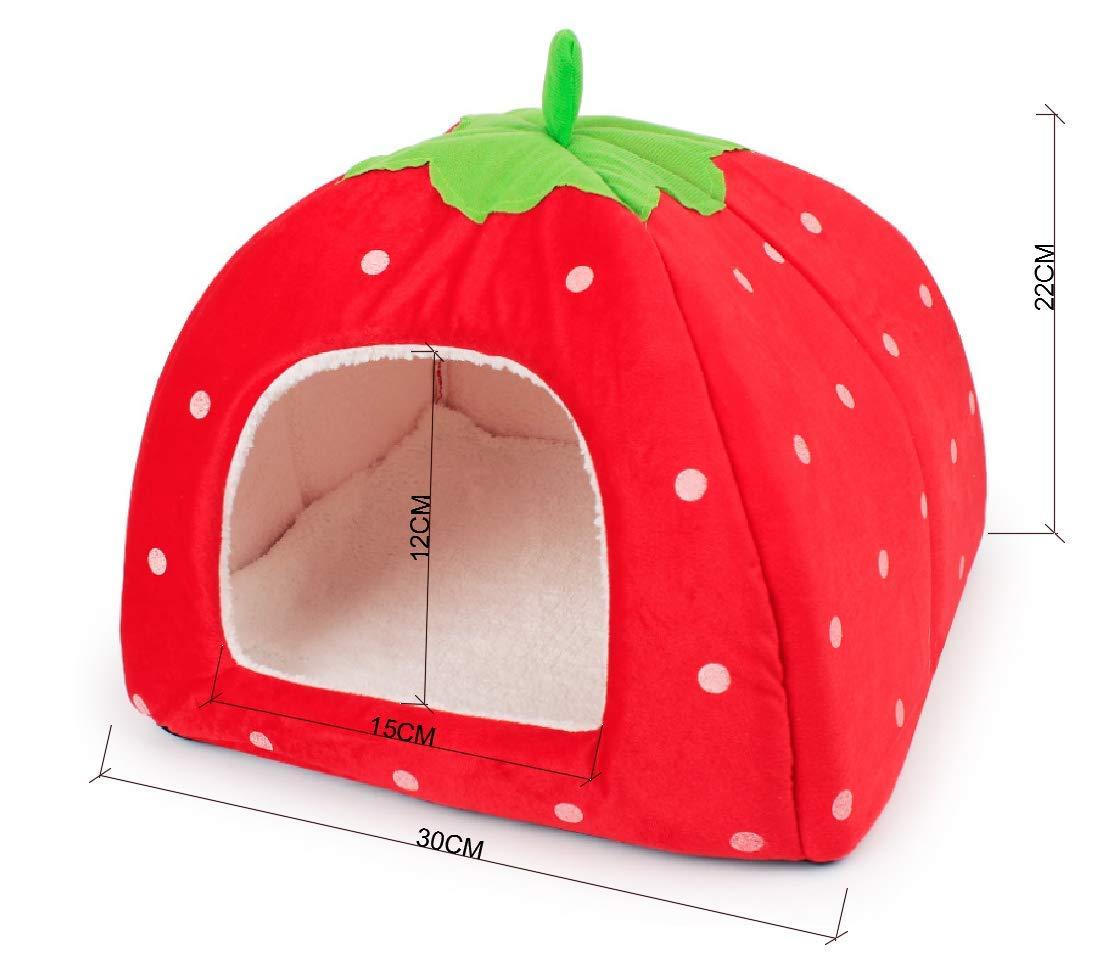 HOMEWINNER - Cama Plegable para Mascotas con diseño de Fresa y Cachemira Perrera Lavable roja: Amazon.es: Productos para mascotas