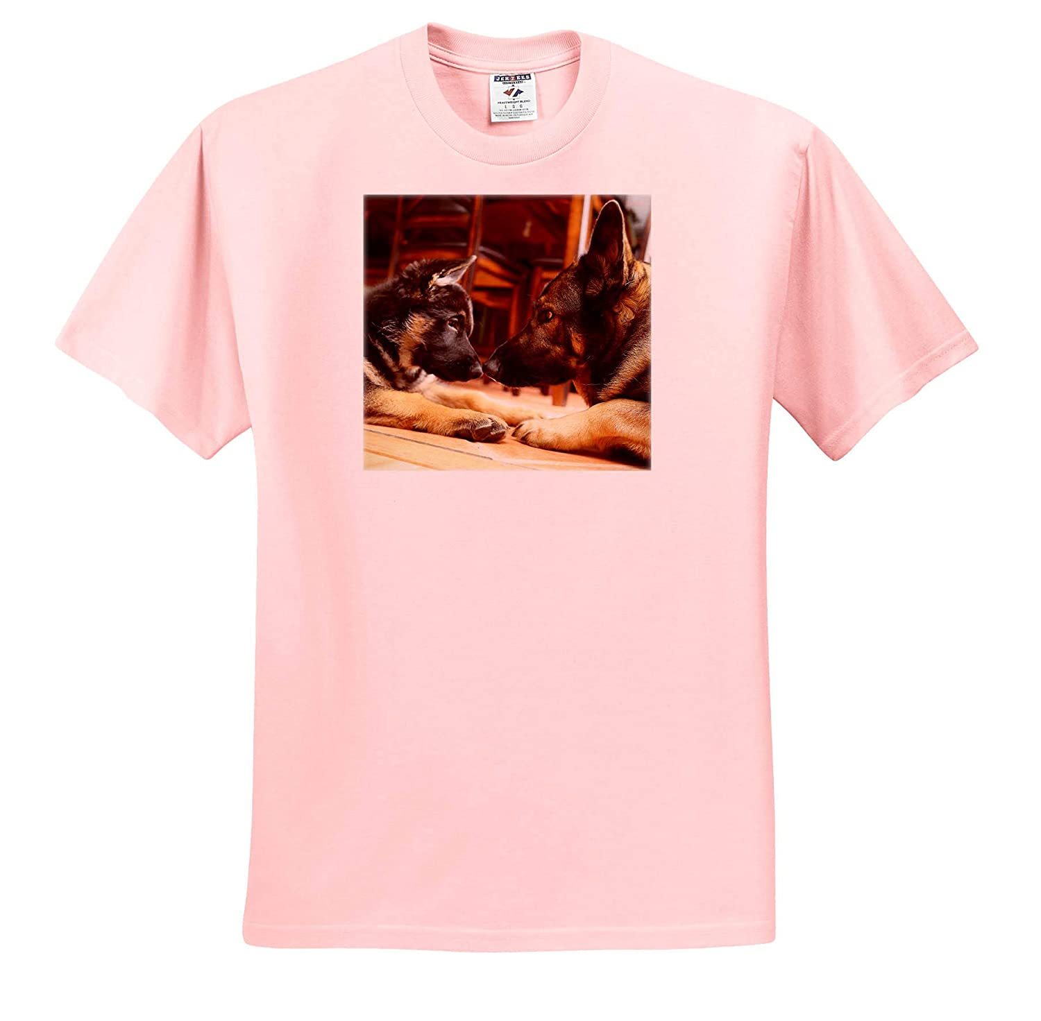 3dRose Stamp City Photo of Two German Shepherds Nose-to-Nose Figuring Each Other Out Animals - T-Shirts