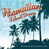 Hawaiian Island Breeze