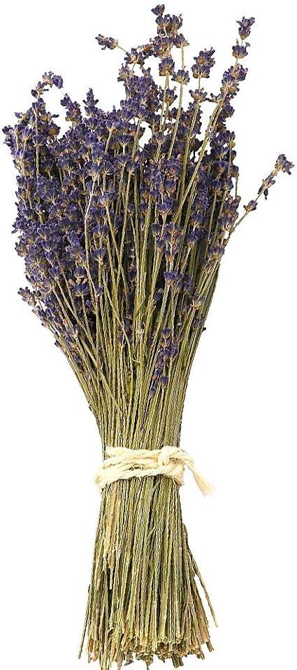 Lavender Bouquet  Dried Lavender  Darling Bridal Bouquet  Dried Flower Bouquet  Lavender Wedding  Bridesmaid Bouquet  Lavender Bunch