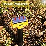 Diaotec Mole Repellents Solar Powered Rodent