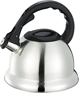 Home Basics TK30344 Tea Kettle, 3-Liter, Brushed