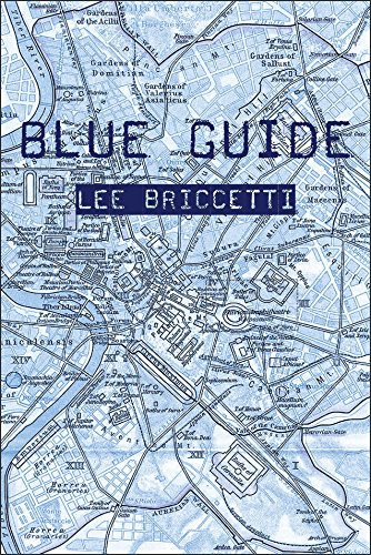 Blue Guide (Stahlecker Selections)
