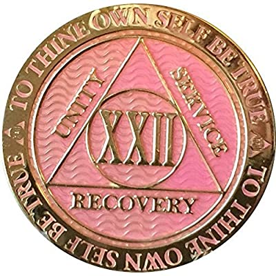 RecoveryChip 22 Year AA Medallion Reflex Pink Gold Plated Chip: Toys & Games