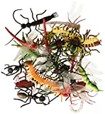 ~ 144 ~ Assorted Realistic Insects / Bugs by Rhode Island Novelty (Toy)