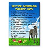 Scottish Deerhound Property Laws Fridge Magnet