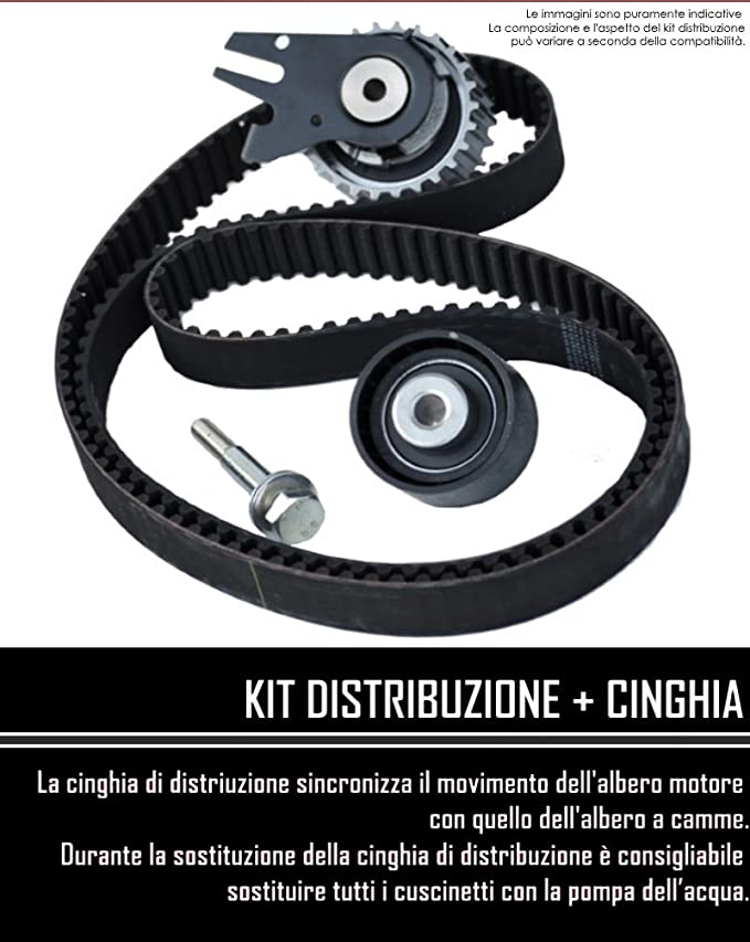 Kit distribución + Bomba + Software + 2 Tensor Seat Cordoba 1.9 TDI 81 kW: Amazon.es: Coche y moto