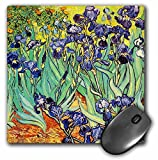 3dRose Irises by Vincent Van Gogh 1889 Purple Flowers Iris Garden Copy of Famous Painting by the Master Mouse Pad (mp_155630_1)